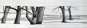 Natur_04