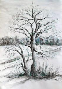 Natur_07